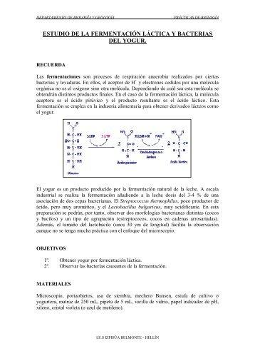 Fermentación láctica y bacterias del yogurt - IES Izpisúa Belmonte