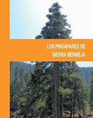 Las rutas: Los pinsapares de Sierra Bermeja - Junta de Andalucía