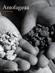 Sustainability Report - Antofagasta PLC