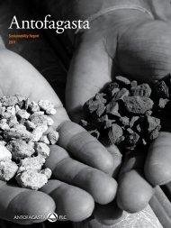Sustainability Report - Antofagasta PLC