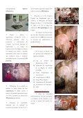 limpieza de cavidades - Federación de Espeleología de la Región ... - Page 6