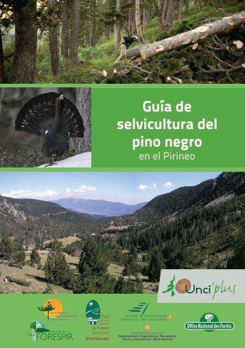 Guía de selvicultura del pino negro