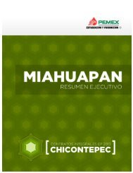 Miahuapan - Contratos Integrales EP