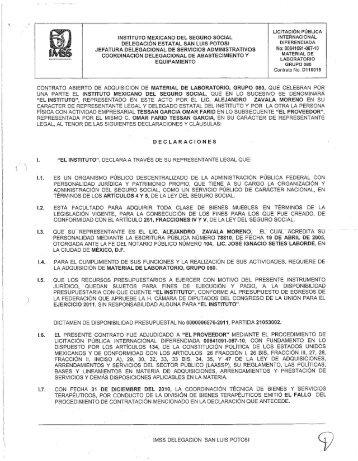 LICITACIÓN PÚBLICA INTERNACIONAL DIFERENCIADA
