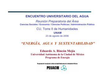 Descargar en formato PDF - Red del Agua UNAM