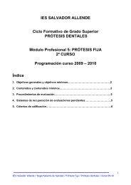 Prótesis fija - IES Salvador Allende