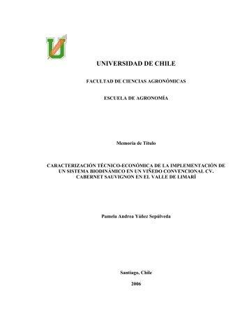 resultados y discusión - Tesis Electrónicas Universidad de Chile