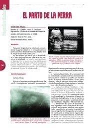 EL PARTO DE LA PERRA - Colegio de Veterinarios de Madrid