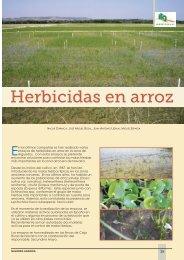 Herbicidas en arroz