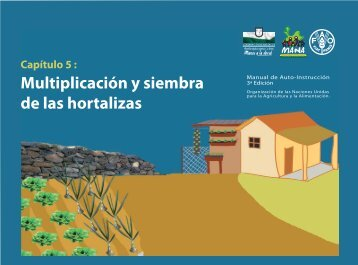 Capítulo 5: Multiplicación y siembra de las hortalizas