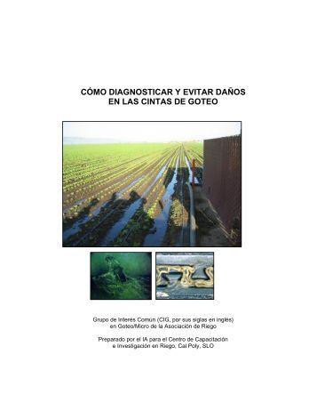 Drip and Avoiding Damage to Drip Tape - Drip Irrigation