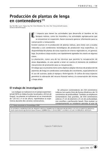 Producción de plantas de lenga en contenedores(1) - INTA