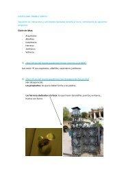 CASTELLANO-TRABALL SÍNTESI: Siguiendo las indicaciones y ...