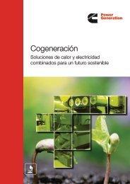 Cogeneración - Cummins Inc.