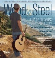 Guía de Guitarras de 2013 - Taylor Guitars