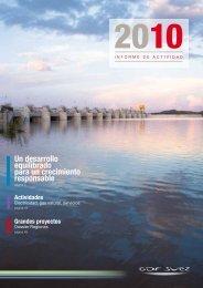 Informe de Actividad GDF SUEZ 2010