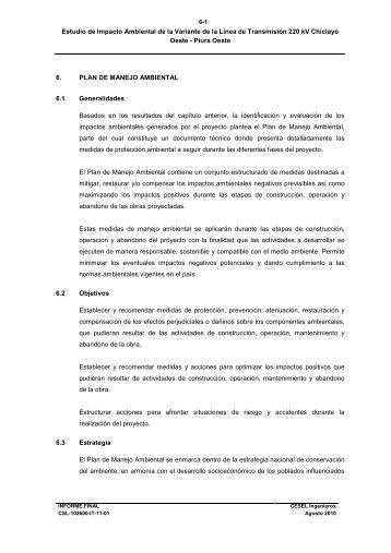 6.0 Plan de Manejo Ambiental.pdf - Ministerio de Energía y Minas