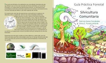 GuÃÆ'Ã'Âa practica forestal de silvicultura comunitaria