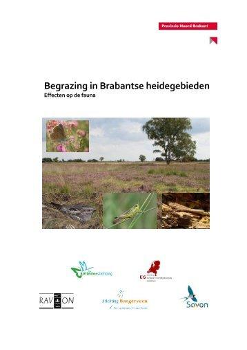 VS2012-017_Grazen_in_Brabantse_heideterreinen_LR