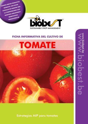 Ficha informativa del cultivo de tomate - Biobest