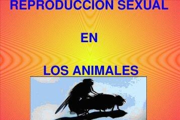 REPRODUCCIÓN SEXUAL EN LOS ANIMALES