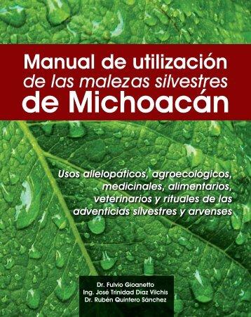 de Michoacán - Joshvolk.com