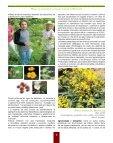 de Michoacán - Joshvolk.com - Page 6