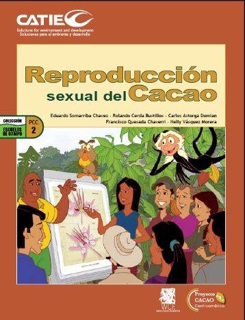 sexual del - World Cocoa Foundation