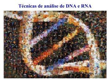 Técnicas de análise de DNA e RNA