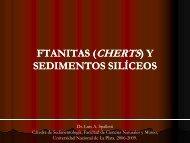 Rocas Silíceas (1.79MB) - Facultad de Ciencias Naturales y Museo ...