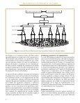 RAFA Bolivia - Intranet CATIE - Page 7