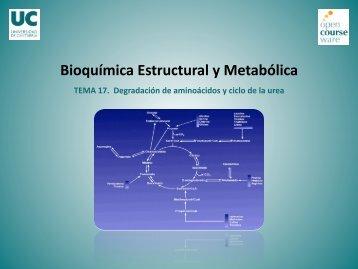 Bioquímica Estructural y Metabólica - OCW Universidad de Cantabria