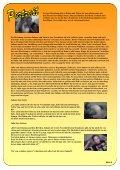 Ausgabe 3 / August 2010 Julia und Juliane ... - Regenbogen HST - Page 7