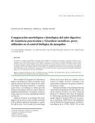 Comparación morfológica e histológica del tubo digestivo de ...