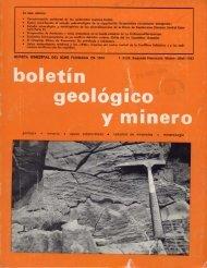 En este número - Instituto Geológico y Minero de España