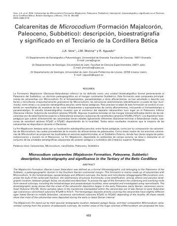 ART. CALCARENITAS DE MICROCODIU - Instituto Geológico y ...