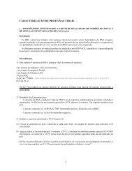 CARACTERIZAÇÃO DE PROTEÍNAS VIRAIS 1
