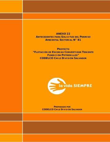 antecedentes pas 81 - SEA - Servicio de evaluación ambiental