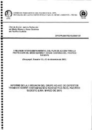 078.Informe reunion adhoc contaminacion radioactiva pacifico ...