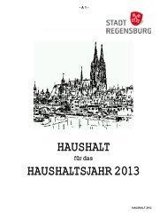 Haushalt 2013 - Teil A - Haushaltssatzung ... - Stadt Regensburg