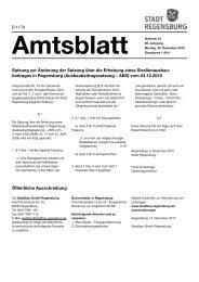 Amtsblatt 51 / 20.12.2010 - Stadt Regensburg
