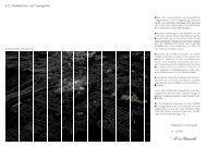 Studie Stadtsilhouette Teil 2 (pdf)