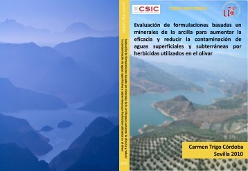 Evaluación de formulaciones basadas en minerales de la arcilla ...