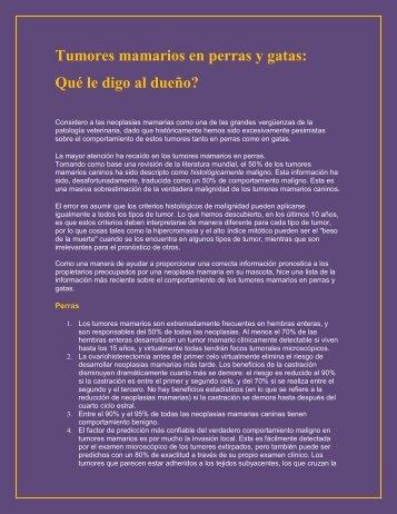 Tumores mamarios en Perras y Gatas - Magazine Canino