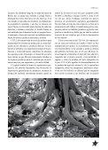Luchas campesinas en México - Revista Rebeldía - Page 4