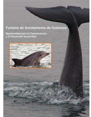 Turismo de Avistamiento de Cetáceos - mundoazul