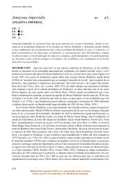 Amazona imperialis - BirdLife International