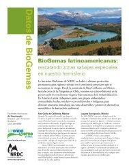 BioGemas latinoamericanas - Natural Resources Defense Council