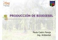 PRODUCCIÓN DE BIODIESEL - Corpoica