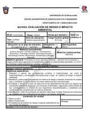 Evaluacion de riesgo e impacto ambiental - Centro Universitario de ...